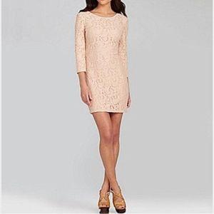 Gianni Bini Blush Greta Lace Dress